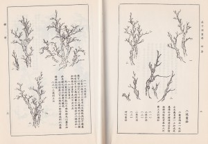 Chinese Painting -Ch-1